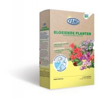 Viano Bloeiende Planten