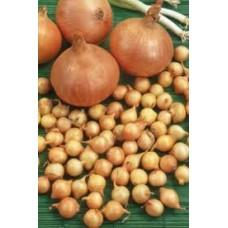 Plantuien sturon 1000 gram