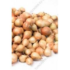 Plantuien stuttgarter 1000 gram